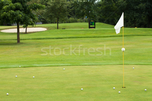 Witte vlag golfbaan focus gras golf Stockfoto © gsermek
