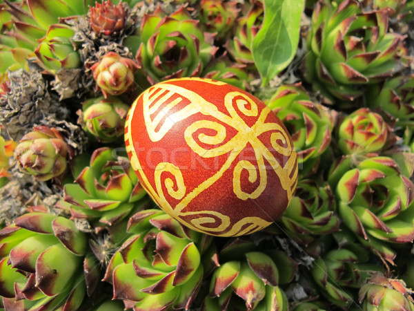 Croatian traditional easter egg in the nature Stock photo © gsermek