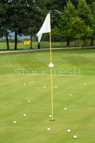 White flag on a golf course Stock photo © gsermek