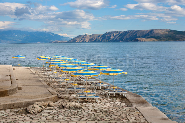 Beach with perfectly parallel lines of parasols Stock photo © gsermek