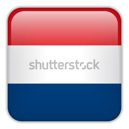Países Bajos bandera aplicación cuadrados botones Foto stock © gubh83