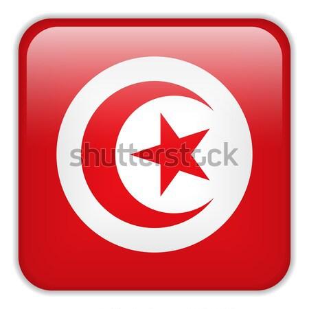 Tunísia bandeira aplicação praça botões Foto stock © gubh83