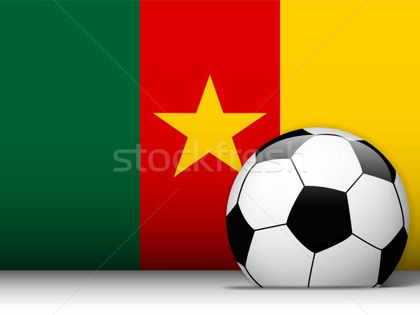 Kameroen voetbal vlag vector ontwerp wereld Stockfoto © gubh83
