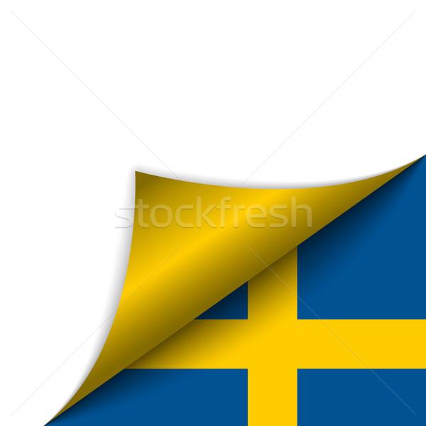 Zweden land vlag pagina vector teken Stockfoto © gubh83