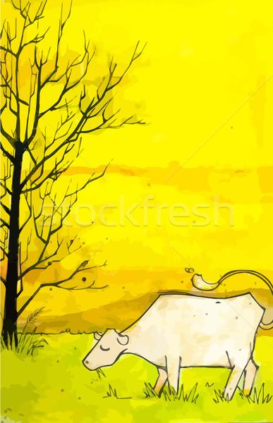 Krowy dziedzinie wysoki szczegółowy ilustracja Zdjęcia stock © gubh83