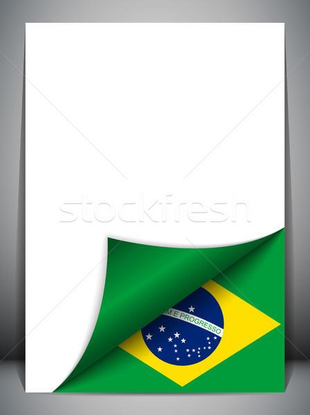 Brazylia kraju banderą strona wektora projektu Zdjęcia stock © gubh83