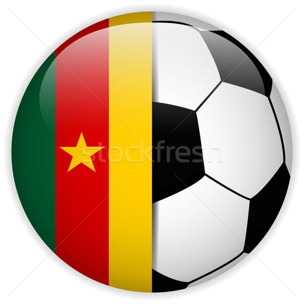 Kamerun banderą piłka wektora świat piłka nożna Zdjęcia stock © gubh83