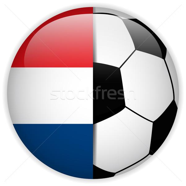 Paesi Bassi bandiera soccer ball vettore mondo calcio Foto d'archivio © gubh83