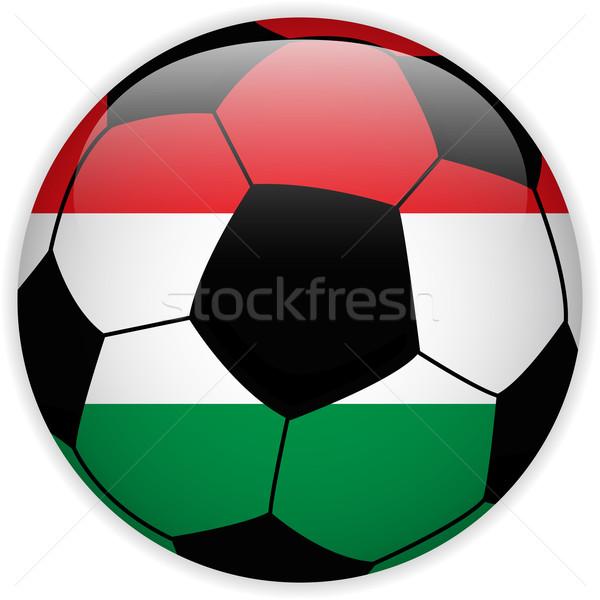 Węgry banderą piłka wektora świat piłka nożna Zdjęcia stock © gubh83
