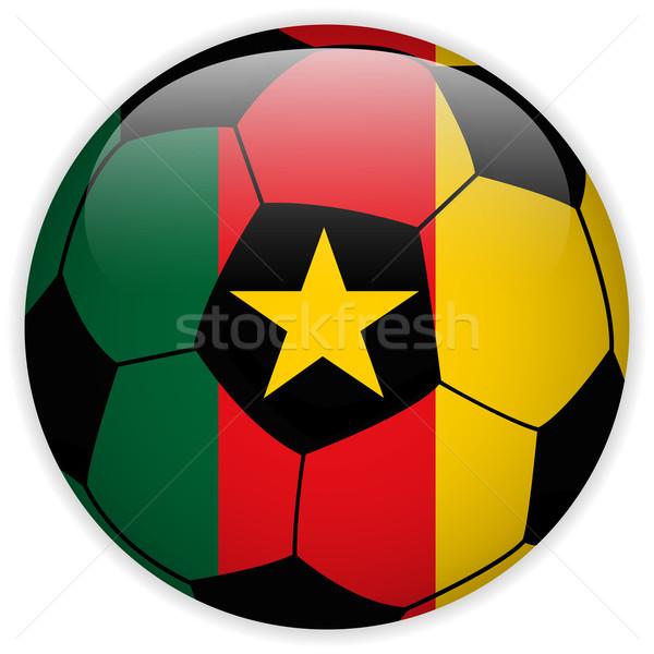Kameroen vlag voetbal vector wereld voetbal Stockfoto © gubh83