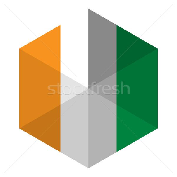 Ireland Flag Hexagon Flat Icon Button Stock photo © gubh83