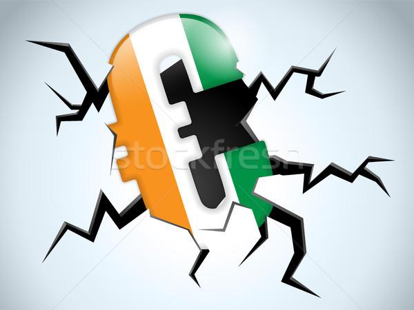 Euro ceny kryzys Irlandia banderą crack Zdjęcia stock © gubh83