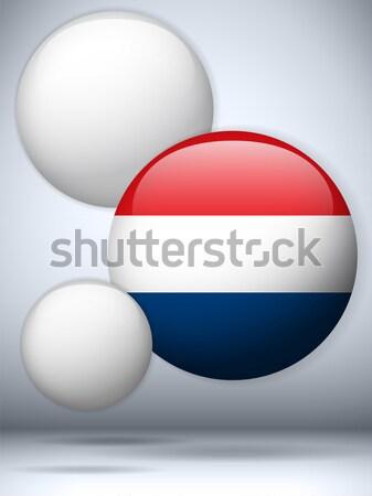 Tajlandia banderą przycisk wektora szkła Zdjęcia stock © gubh83