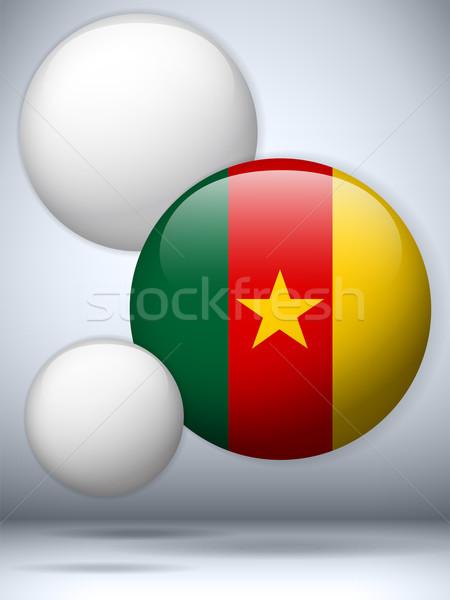 Kamerun banderą przycisk wektora szkła Zdjęcia stock © gubh83
