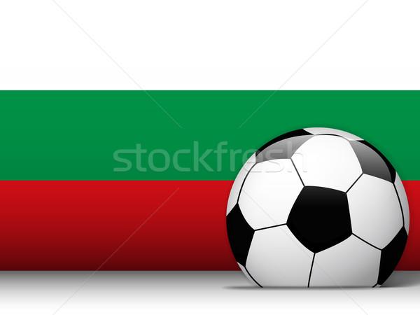 Bułgaria piłka banderą wektora projektu świat Zdjęcia stock © gubh83