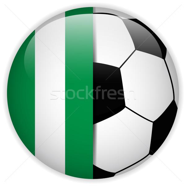 Nigeria vlag voetbal vector wereld voetbal Stockfoto © gubh83