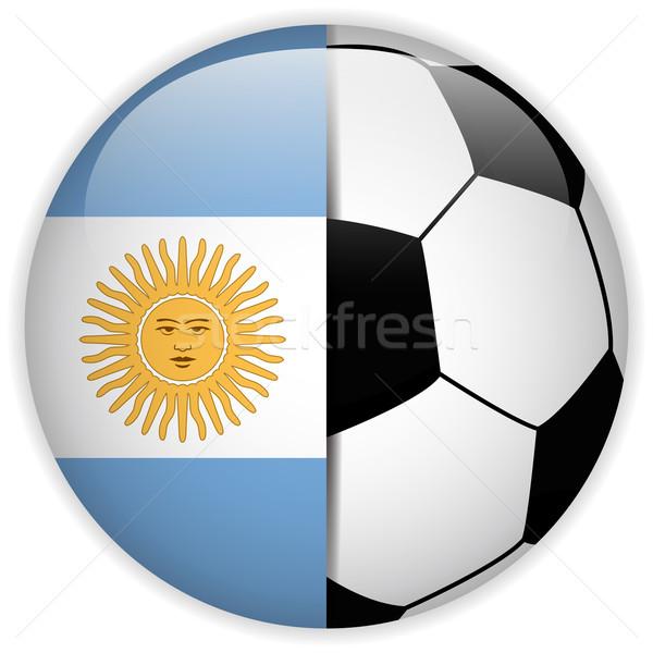 Photo stock: Argentine · pavillon · ballon · vecteur · monde · football