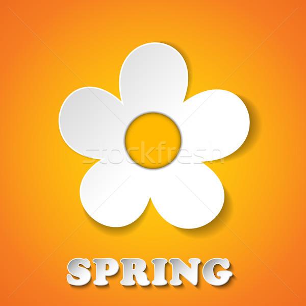 Gyönyörű tavasz fehér virágok vektor terv levél Stock fotó © gubh83