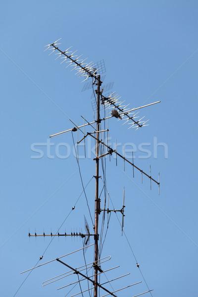 Blue sky casa azul telhado antena Foto stock © Gudella