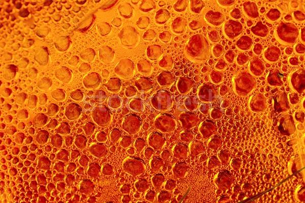 Bubbles Stock photo © Gudella