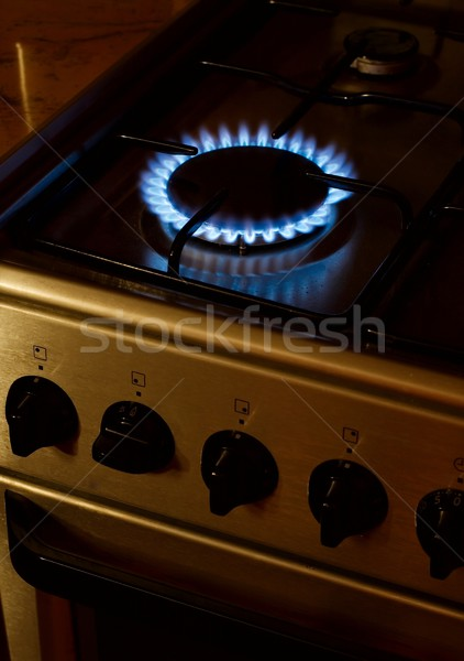 Gas burner Stock photo © Gudella