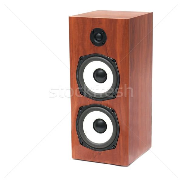 Spreker geïsoleerd witte hout ontwerp Stockfoto © Gudella