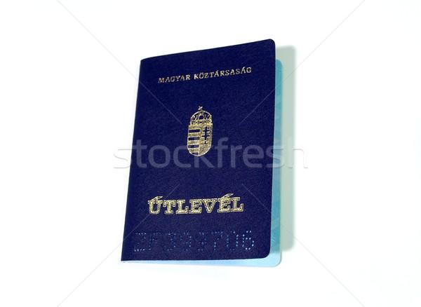パスポート 孤立した 白 ホーム クロス 国 ストックフォト © Gudella