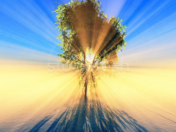 Lumière du soleil effet arbre feuillage nature bleu Photo stock © guffoto