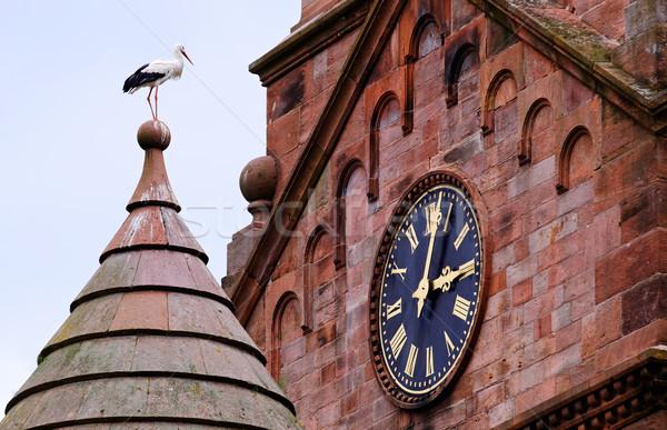 Gólya templom tető néz óra Stock fotó © guffoto
