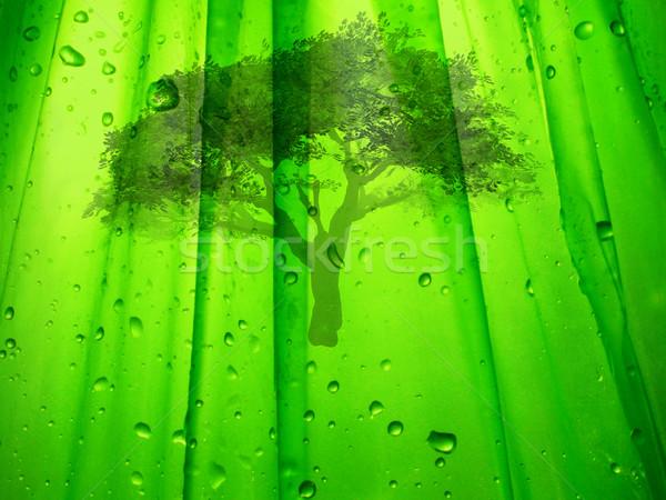 Verde ilustração ecologia árvore natureza cair Foto stock © guffoto