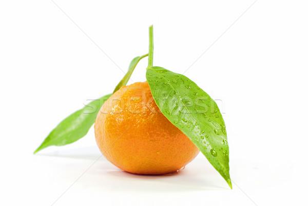 Mandarin Stock photo © guffoto