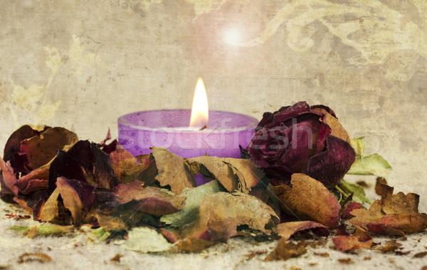 поэтический закрывается свечу цветок Vintage Сток-фото © guffoto