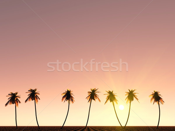 an idea of paradise Stock photo © guffoto