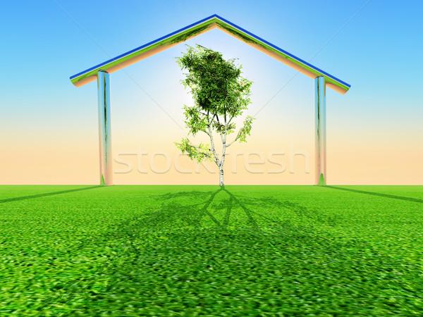 Zöld otthon nyírfa fa tető ötlet Stock fotó © guffoto