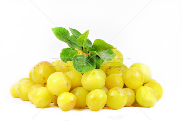 свежие лист белый десерта здорового урожай Сток-фото © guffoto