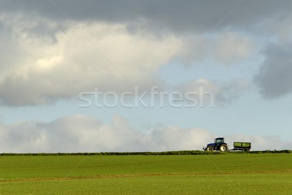 農業の 風景 フィールド ストックフォト © guffoto