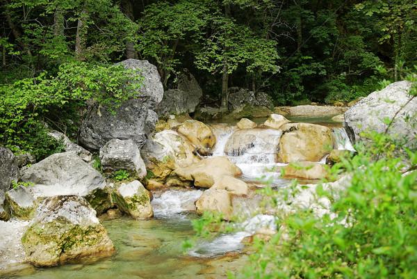 реке горные весны зеленый водопада Сток-фото © guffoto