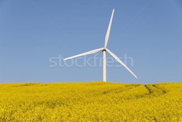 Megújuló energia szélturbina tájkép mező olaj erő Stock fotó © guffoto