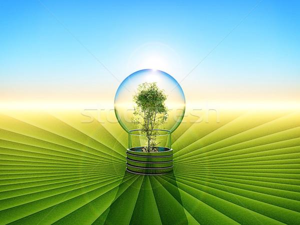 Zöld energia takarékosság fa fény otthon Stock fotó © guffoto