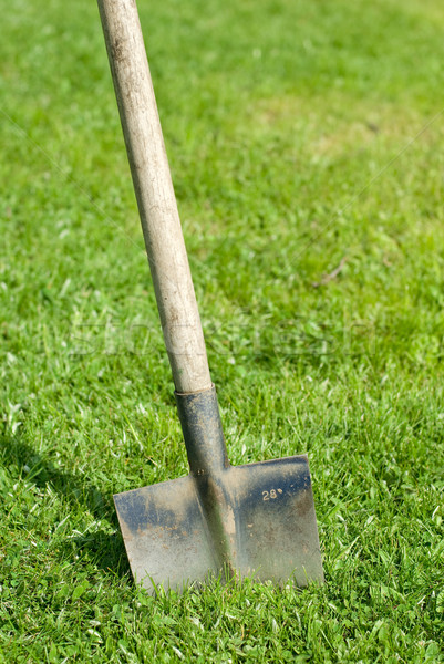 Vanga bloccato erba strumento Foto d'archivio © guffoto
