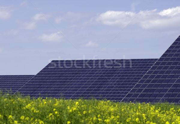 Sans titre Stock photo © guffoto