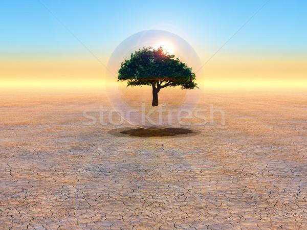 Előrelátás jövő fa buborék szimbólum természet Stock fotó © guffoto