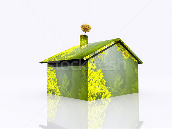 теплица иллюстрация экологический дома лес строительство Сток-фото © guffoto