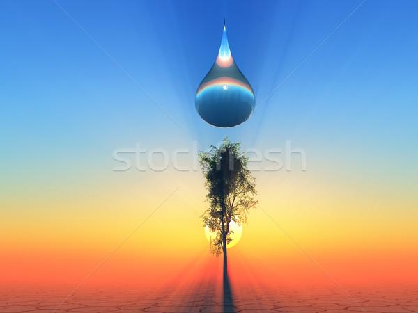 Csepp élet egy vízcsepp nap naplemente Stock fotó © guffoto