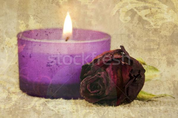 романтические закрывается свечу цветок Сток-фото © guffoto