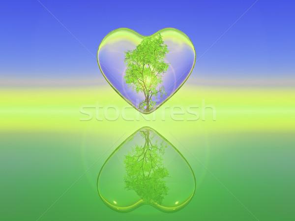 Natureza amor bétula árvore dentro transparente Foto stock © guffoto