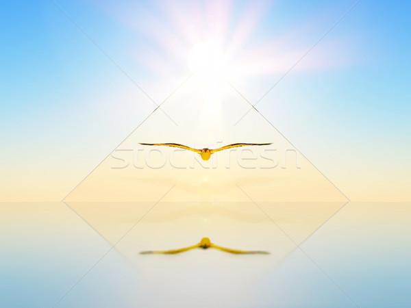 Fantasztikus előrelátás madár bent absztrakt fény Stock fotó © guffoto