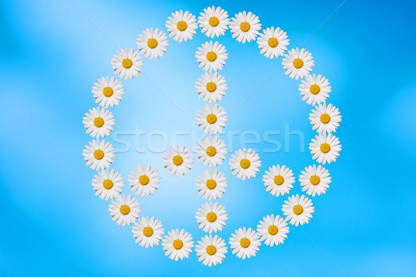 Paz amor símbolo margaridas flor assinar Foto stock © guffoto