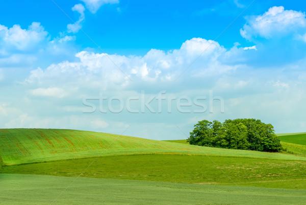 Vidék tájkép zöld legelő felhős égbolt Stock fotó © guffoto