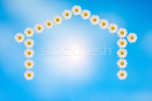 Sweet домой форма Ромашки солнечный свет внутри Сток-фото © guffoto